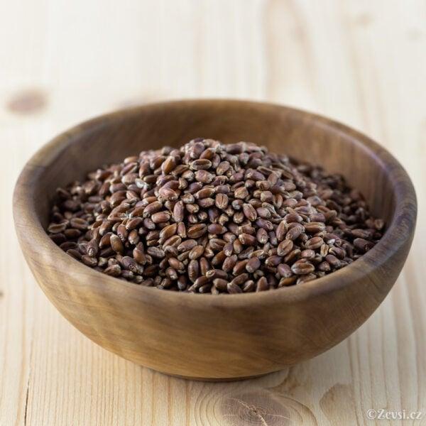 Červená, purpurová pšenice.