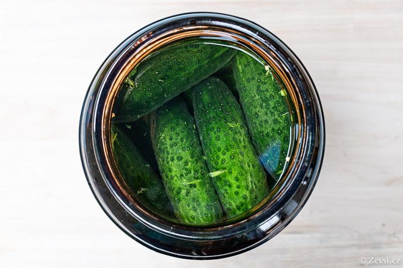 Okurky v kvasné nádobě s kořením, zalité slaným nálevem.